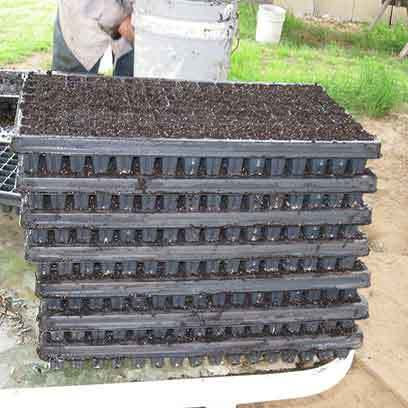 Soil Block Propagation Trays Wholesale