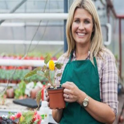 Bulk Buy Black Plastic Gallon Flower Pots Canada