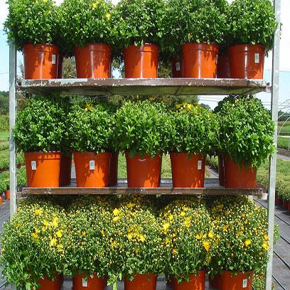 Large Plastic Terracotta Planters Wholesale Supplier