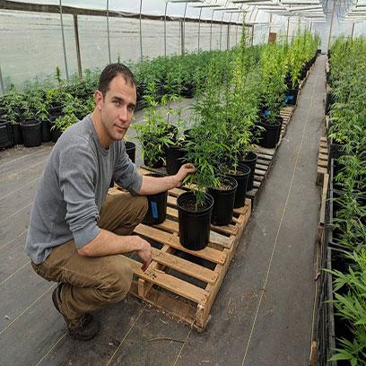Black 2 Gallon Plastic Nursery Pots In Bulk