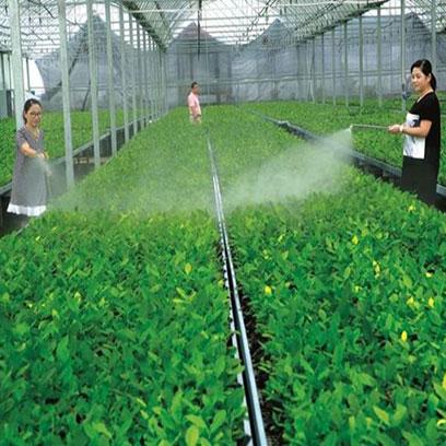 Greenhouse Square Plastic Nursery Plant Trays