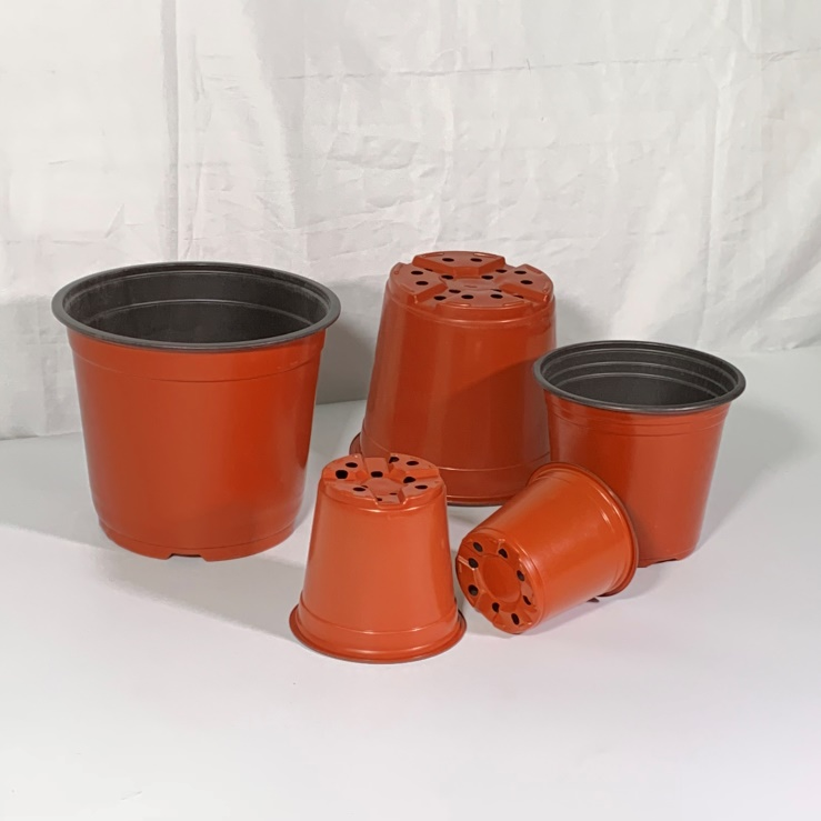 Cheap Black Mini Plastic Flower Pots In Bulk