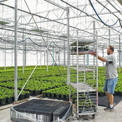 Bulk Buy Cheap Small Plastic Plant Pots UK