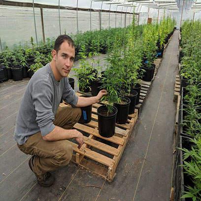 Cheap 3 Gal Plastic Nursery Pots Manufacturer