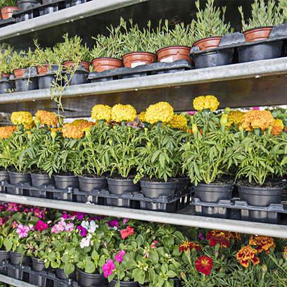 Viagrow 1.5 Gallon Black Nursery Pots In Bulk