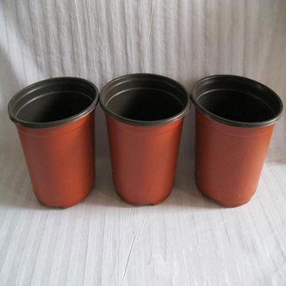 Cheap 8 Inch Plastic Nursery Pots In Bulk