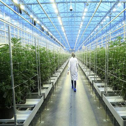 Large 15 Inch Commercial Plastic Plant Pots UK