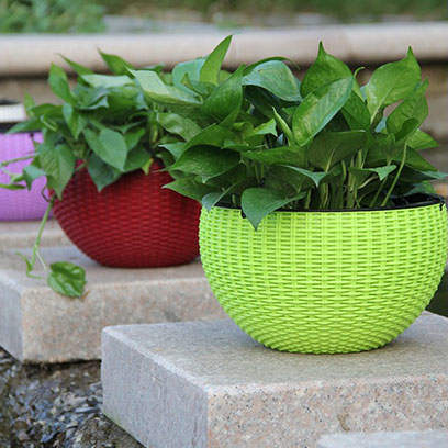 Cheap Green Plastic Hanging Baskets For Plants