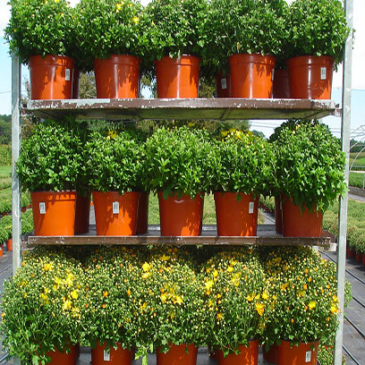 Round 7 Inch Plastic Plant Pots Cape Town