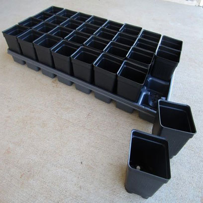 Square 4 Inch Nursery Succulent Pots Wholesale