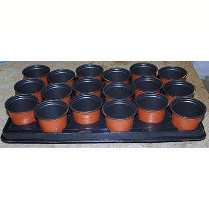Cheap 120mm Plastic Plant Pots Wholesale