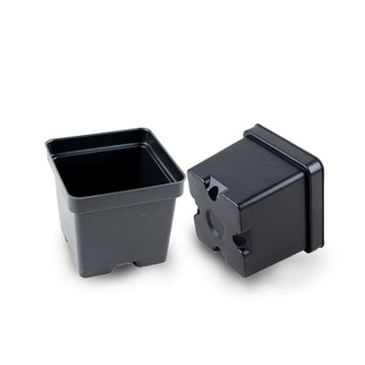 Cheap Square Plastic Starter Plant Pots NZ