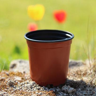 Bulk Purchase Small 4 Inch Plastic Plant Pots