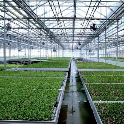 Cheap Plastic Greenhouse Trays And Pots Manufacturer