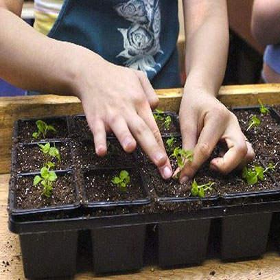Cheap 9cm Square Plastic Plant Pots Manufacturer