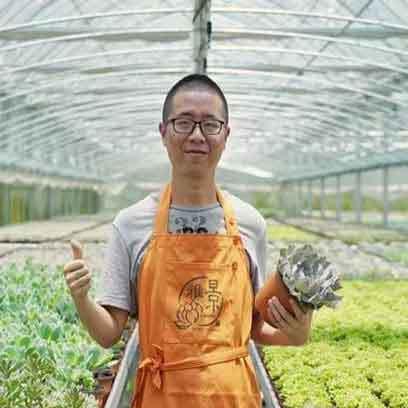 Bulk Buy Plastic Terracotta Nursery Planters