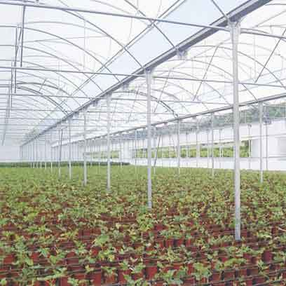 Plastic Greenhouse Trays And Pots Wholesale Supplier