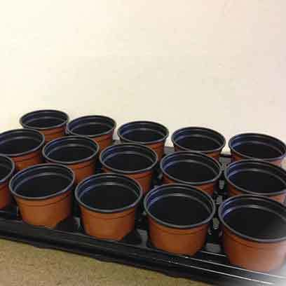 Cheap Plastic Nursery Trade Pots Manufacturer