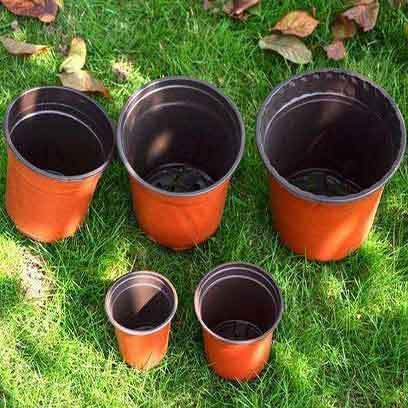 Bulk Buy Plastic Nursery Supplies Pots