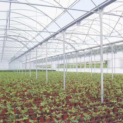 Cheap Plastic Herb Pots Manufacturers In China