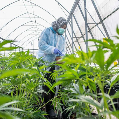 15 Inch Plastic Plant Pots Wholesale Price Canada
