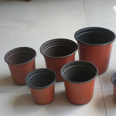 Cheap 10 Inch Plastic Flower Pots Wholesale USA
