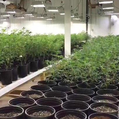 18 Inch Plastic Plant Pot Wholesale Suppliers USA