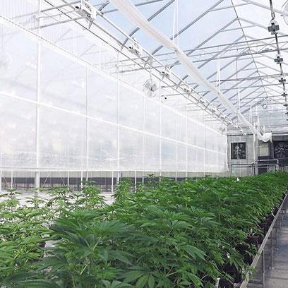 3 Gal Plastic Nursery Pots Wholesale Suppliers UK