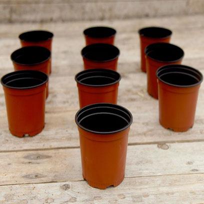 Cheap Plastic V10 Nursery Pots Wholesale Price SA