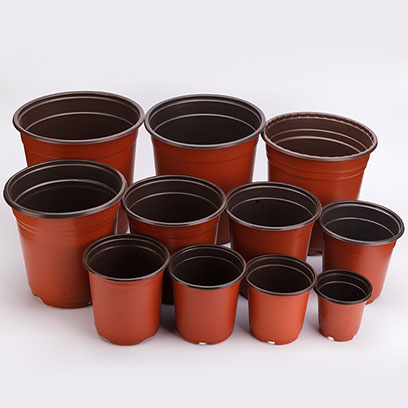 10 Inch Plastic Flower Pots Wholesale Price NZ