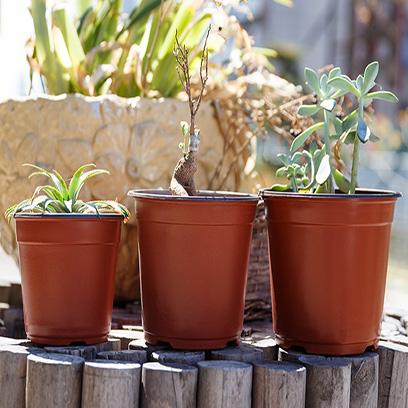 Cheap 4 Inch Plastic Plant Pots Wholesale Australia