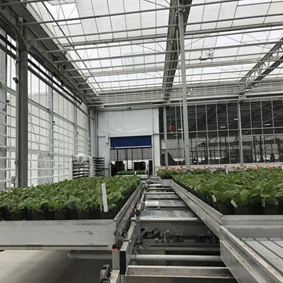 1 Gallon Plastic Flower Pots Wholesale Suppliers UK