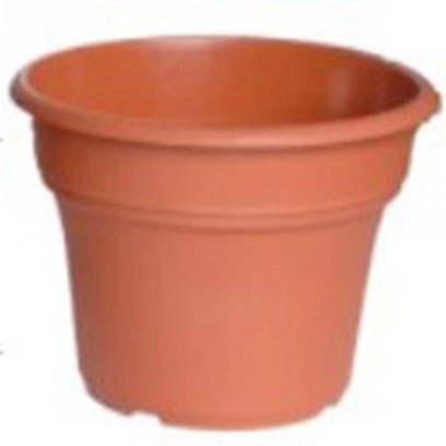 Best Plastic Bonsai Pots Wholesale Suppliers Japan