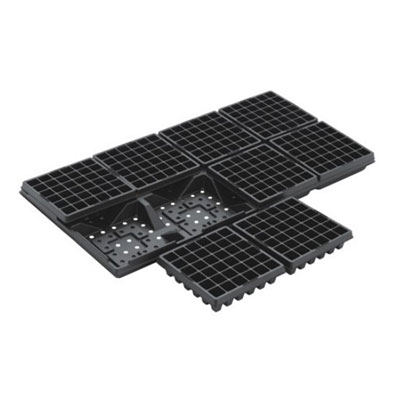 Best Plastic Cell Seedling Trays Manufacturers Thailand
