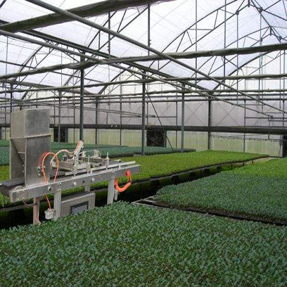 Cheap Plastic Cell Seedling Trays Suppliers Turkey