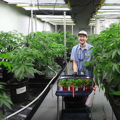 Large Plastic Plant Pots Manufacturers Massachusetts