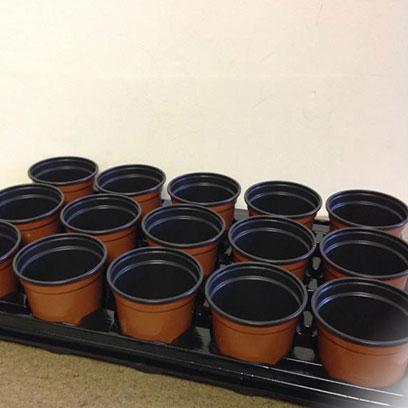 Best Plastic Planting Pots Wholesale Indonesia