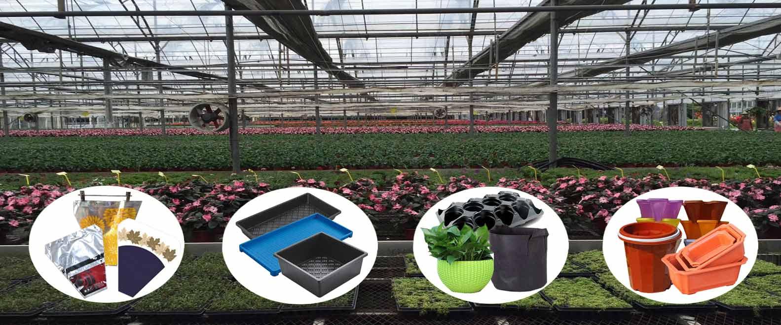 propagation tray