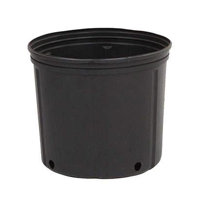 Plastic 2 gallon pots