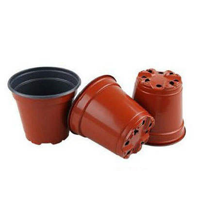 11cm(top dia) x 9.5cm(height) grow pots