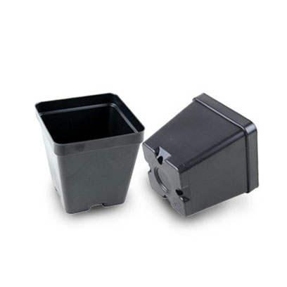 Plastic 3.5 inch square pots