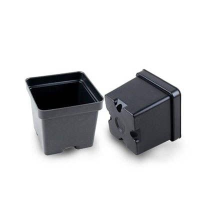 Plastic 4.5 inch square pots