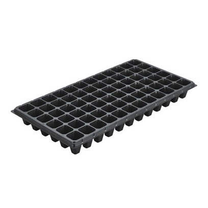 XT 72 cells seedling trays