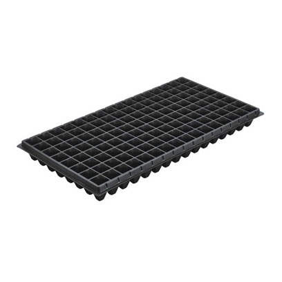 XT 128 cells seedling trays