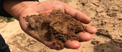 土壤中石油烃检测,土壤检测机构