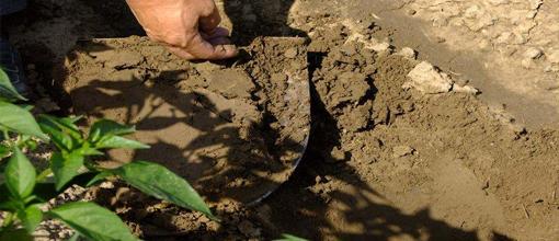 土壤污染修复