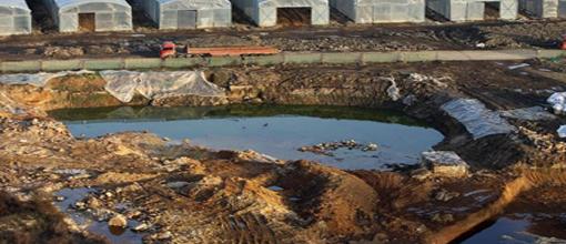重金属土壤污染修复技术