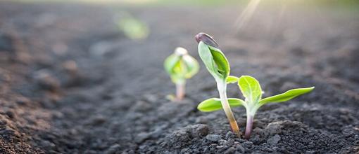 农田种植土壤检测