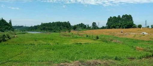 广西土壤检测,绿色种植土壤检测,土壤检测