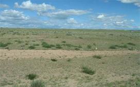 土壤检测,石油烃检测,土壤污染检测